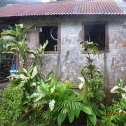 Marquesas - Teil I 004_624x468