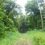 Marquesas - Teil I 024_624x468