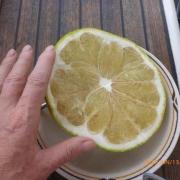 Marquesas - Teil I 060_624x468