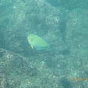 Marquesas - Teil I 083_624x468