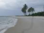 Recife und Suape