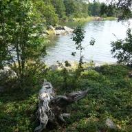 schweden-2011-024_576x768
