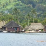 Society-Islands Teil I 058 (Copy)