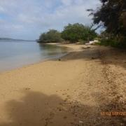 Tonga - Teil II 028_624x468