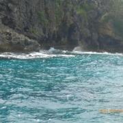 Tonga - Teil II 046_624x468
