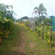 Tonga - Teil II 022_624x468