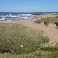 Uruguay 005_624x468